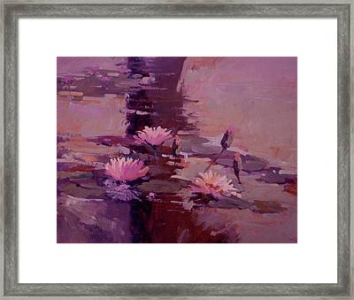 Pond Blossoms - Water Lilies Framed Print