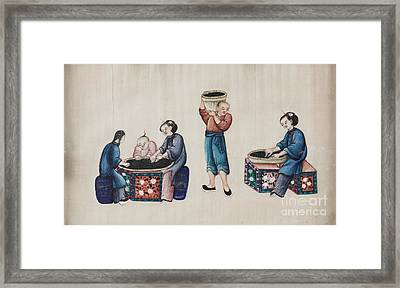 Portraying The Chinese Tea Industry Framed Print