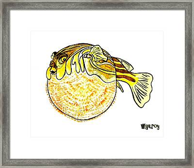 Puffer Fish Framed Print by W Gilroy