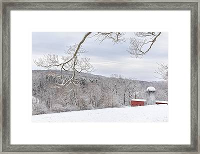 Reaching Out Framed Print by Bill Wakeley