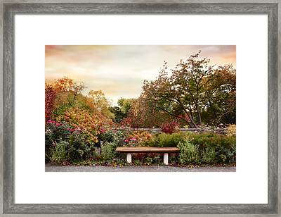 Repose Framed Print by Jessica Jenney