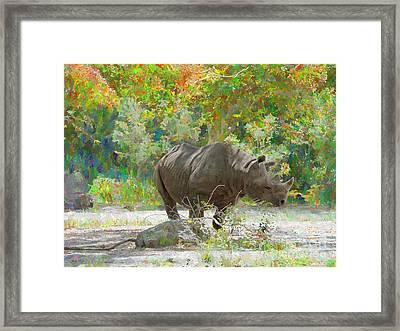 Rhino Impressions Framed Print