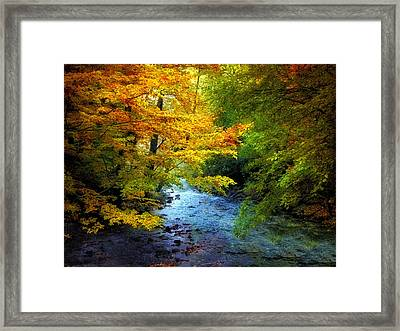 River View Framed Print by Jessica Jenney