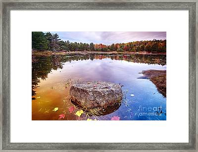 Rock In A Pond Framed Print by George Oze