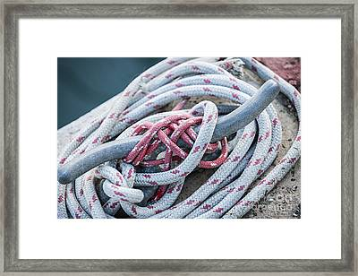 Ropes On Cleat Framed Print by Elena Elisseeva