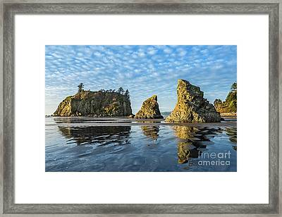 Ruby Beach In Olympic National Park Located In Washington State. Framed Print