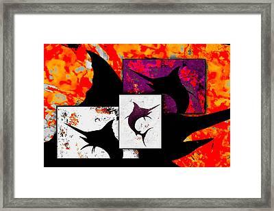 Salty Marlins  Framed Print by Barry Knauff