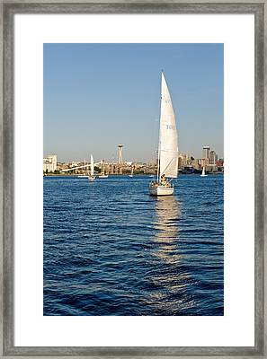 Seattle Sailing Framed Print by Tom Dowd