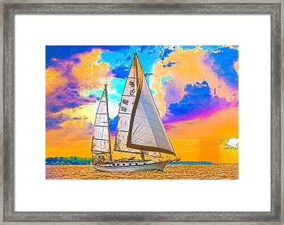 Shannon 38 Framed Print