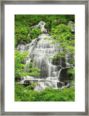 Slatestone Brook Falls Framed Print