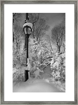 Snow Storm 2 Framed Print