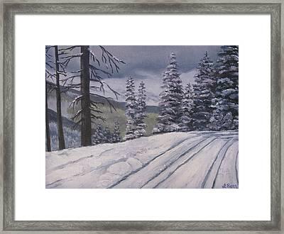 Snowbound Framed Print by Lisa Barr