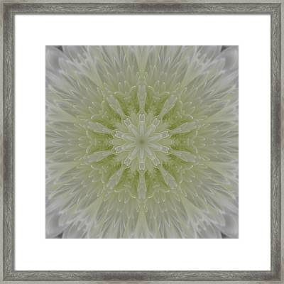 Snowflake Framed Print by Michele Caporaso