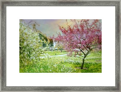 Framed Print featuring the photograph Solitude by Diana Angstadt