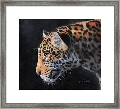 Framed Print featuring the painting South American Jaguar by David Stribbling