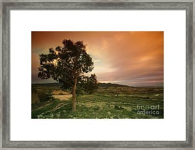Spanish Landscape Framed Print by Angel  Tarantella