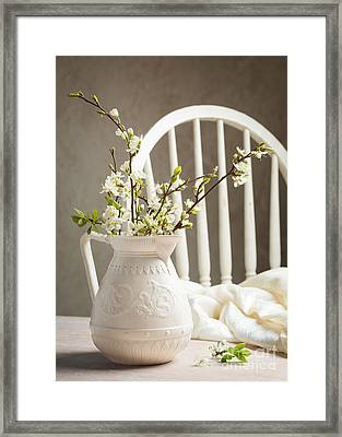 Spring Blossom Framed Print by Amanda Elwell