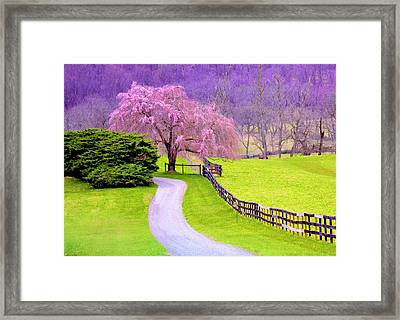 Purple Haze In The Distance Framed Print