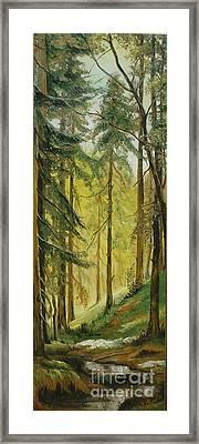 Spring Framed Print by Sorin Apostolescu