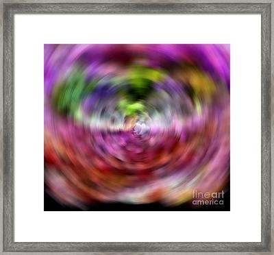 Spun Framed Print by Krissy Katsimbras