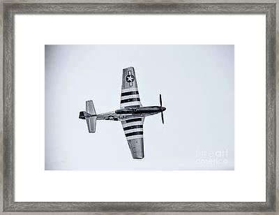 Stallion 51 - P-51d Mustang - Crazy Horse 2 Framed Print