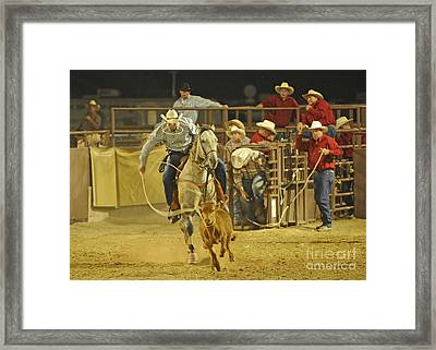 Steer Wrestling Framed Print by Dennis Hammer