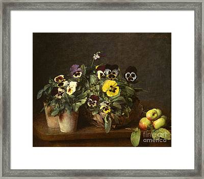 Still Life With Pansies Framed Print