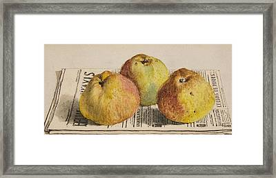 Still Life With Three Apples And A Newspaper Framed Print