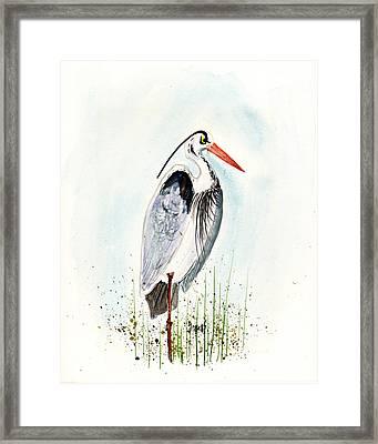 Jenifer's Friend - George #3 Framed Print