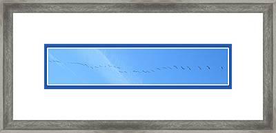 String Of Birds In Blue Framed Print