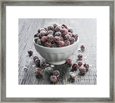 Sugared Cranberries Framed Print by Elena Elisseeva