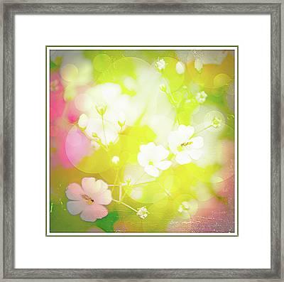 Summer Flowers, Baby's Breath, Digital Art Framed Print