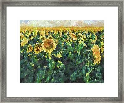 Sunflower Fields Framed Print by Art OLena
