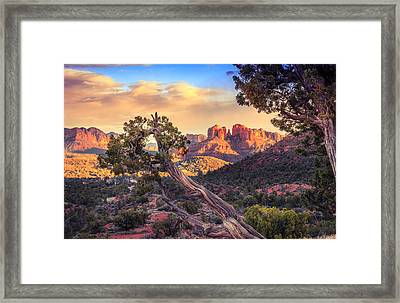 Sunset At Cathedral Rock Framed Print by Alexey Stiop