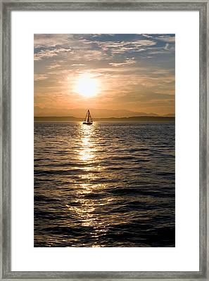 Sunset Sail Framed Print by Tom Dowd