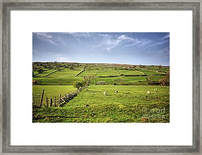 Swaledale Views Framed Print