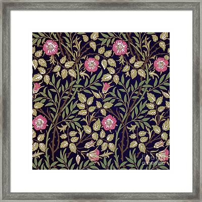 Sweet Briar Framed Print