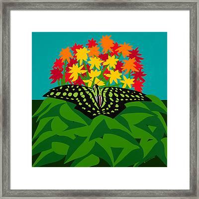 Tailed Jay Framed Print