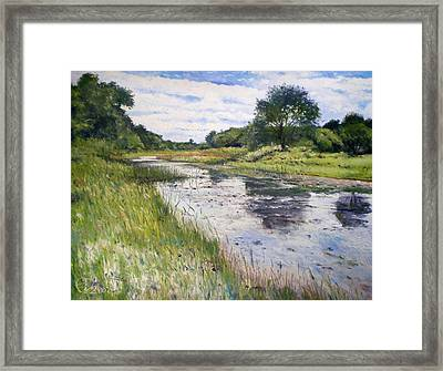 Thamalakane River At Maun Botswana 2008  Framed Print by Enver Larney