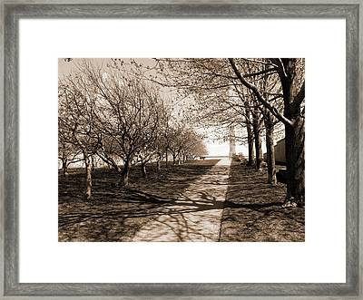 The Path Framed Print by Robert Knight