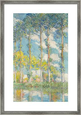 The Poplars Framed Print by Claude Monet