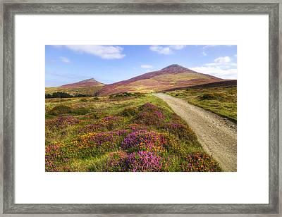 The Rivals - Wales Framed Print by Joana Kruse