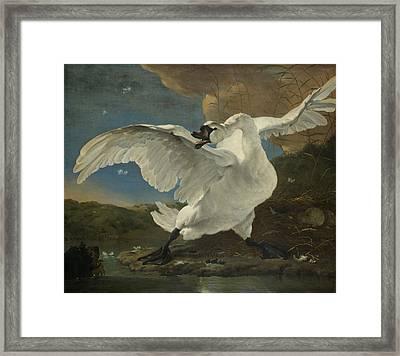 The Threatened Swan Framed Print