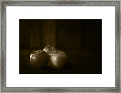 Three Apples Sepia Toned Framed Print by Donald  Erickson