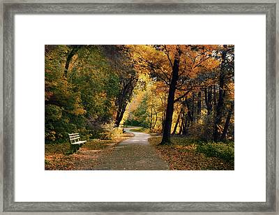 Through The Woods Framed Print by Jessica Jenney