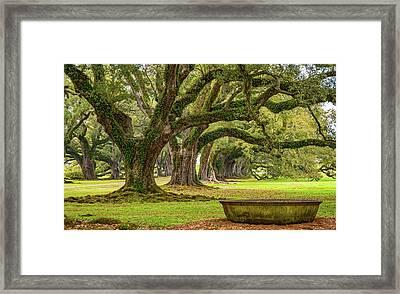 Time Travel 2 Framed Print