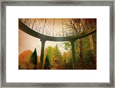 Timeless Framed Print