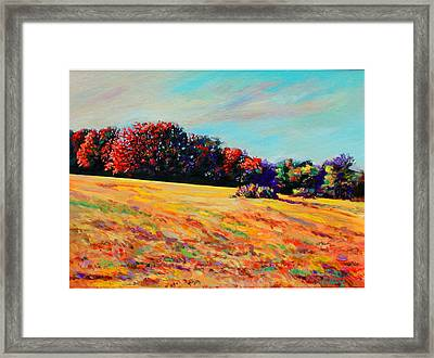 Tomorrow Afternoon Framed Print by Richard Knox