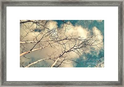 Tree Tops 5 Framed Print by Priska Wettstein
