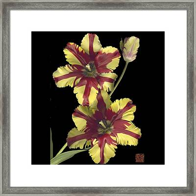Tulip Framed Print by Lloyd Liebes